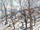 Snow-Blue-Ridge